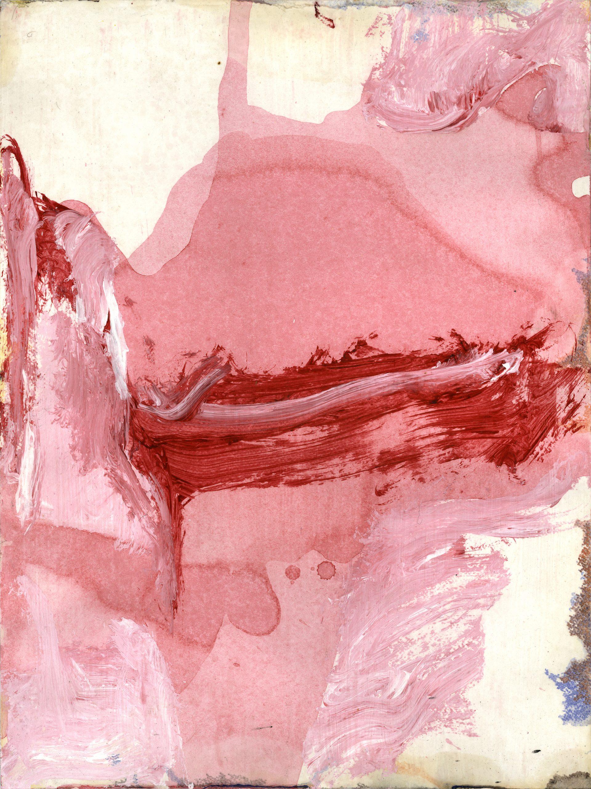 Peregrine n°14, Acrylic on Paper, 61 x 46 cm, 2015